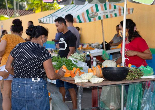Feirinha da Agricultura Familiar estimula consumo de alimentos orgânicos e impulsiona agricultura familiar em Centro Novo do Maranhão